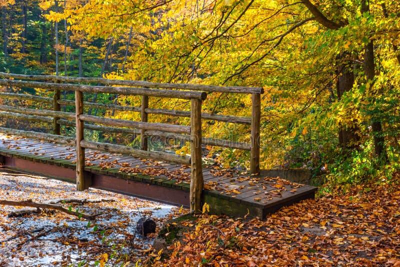 Footbridge Over Creek stock image