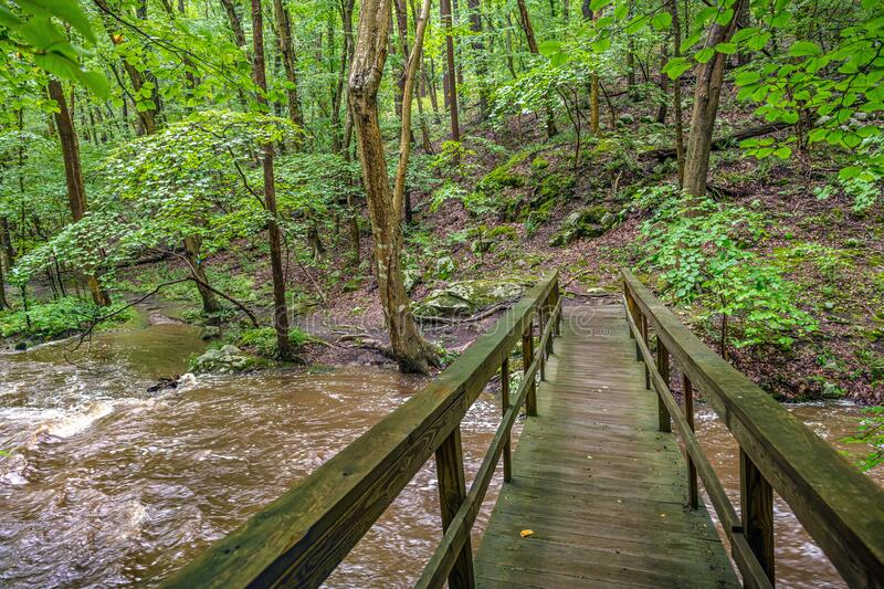 Footbridge Over Creek royalty free stock images