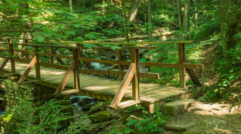 Footbridge Over a Mountain Trout Stream. Footbridge located over a mountain trout stream in the Jefferson National Forest, Virginia, USA royalty free stock photography