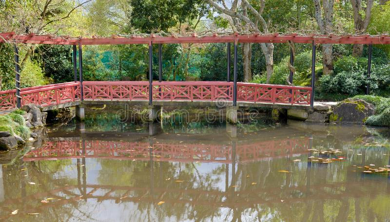 A footbridge over a pond in a chinese garden at Hamilton Botanic. Al gardens New Zealand with the bridge reflected in the water royalty free stock image