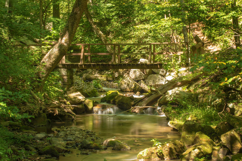 Footbridge over a Wild Mountain Trout Stream. Footbridge located on a wild mountain trout stream in the mountains of Virginia, USA stock photography