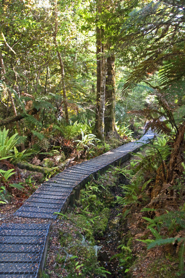 Footbridge on the trail royalty free stock images
