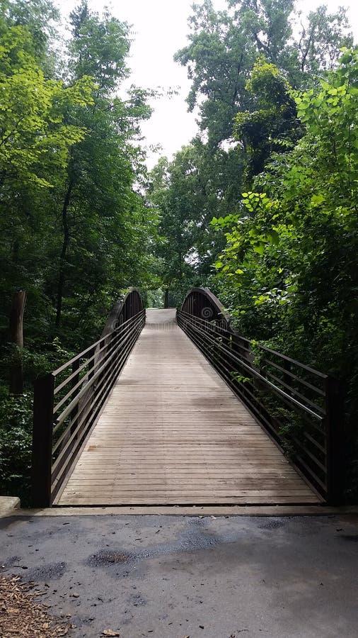 Footbridge w drewnach fotografia royalty free