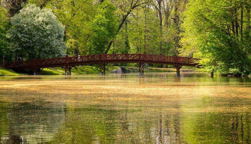 Footbridge w parku fotografia royalty free