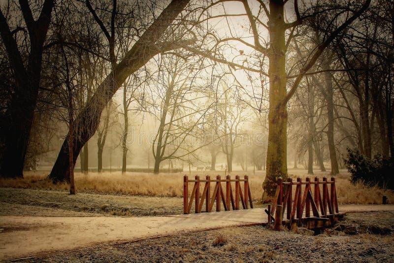 Footbridge w parku w zimie obraz royalty free