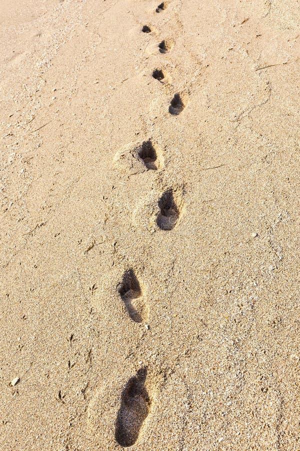 Footmarks na piaskowatej plaży zdjęcie royalty free