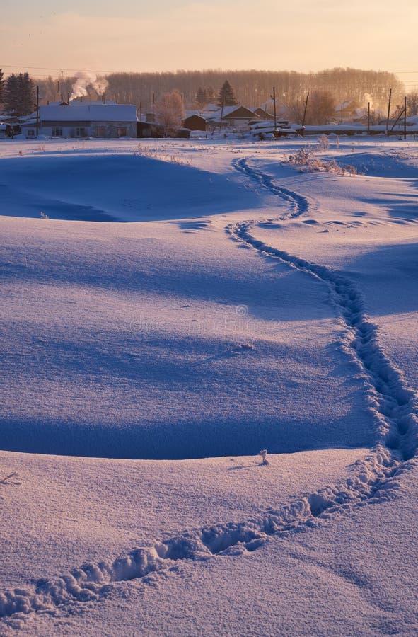 Footpath ślada w śniegu w rosjanina Altai wiosce w zimie zdjęcia royalty free