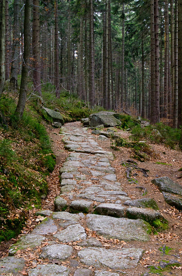 Download Footpath Stock Photo - Image: 23737230