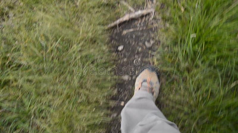 footpath vídeos de arquivo