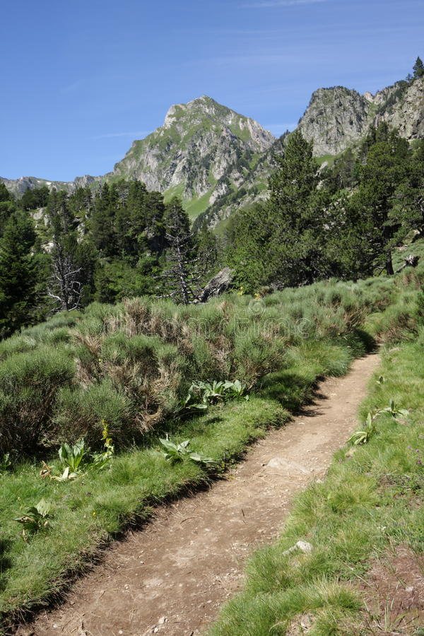 Footpath in Ariege, France. Footpath in Pyrenean mountains in Ariege, Occitanie in south of France stock images