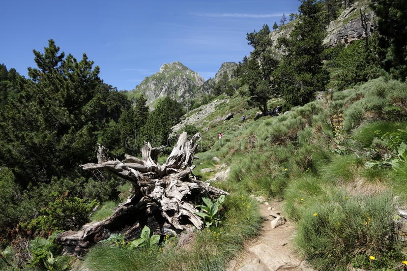 Footpath in Ariege, France. Footpath in Pyrenean mountains in Ariege, Occitanie in south of France stock photos