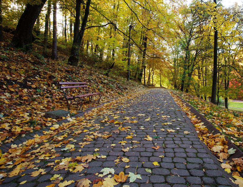 Footpath in autumn city park strewn with yellow fallen leave. Footpath in the autumn city park strewn with yellow fallen leaves stock photo