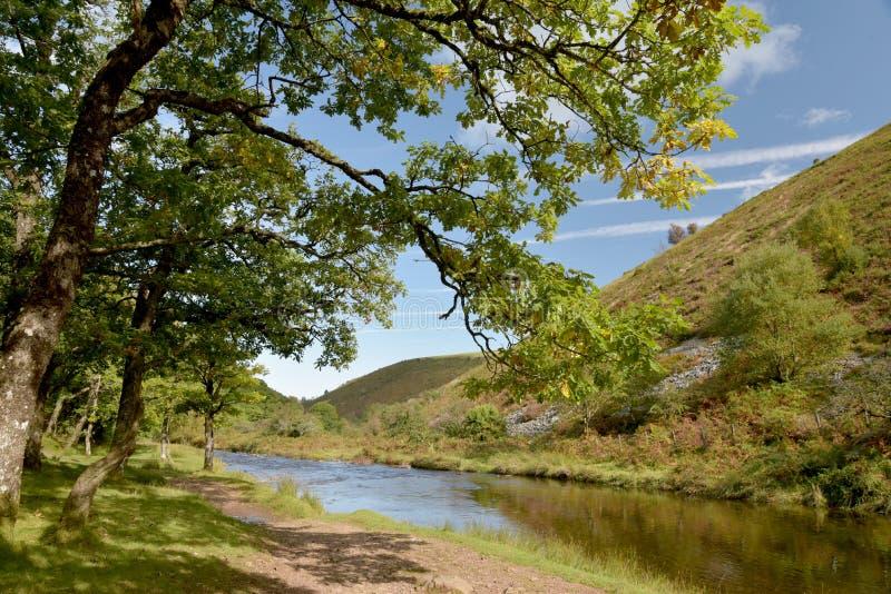 Path in Doone Valley, Exmoor, North Devon. Footpath beside Badgworthy Water near Malmsmead in the Doone Valley, Exmoor, North Devon stock photography
