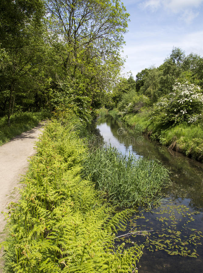 Footpath beside disused canal at Burrs Country Park. Bury Lancashire, England, UK on a sunny Summer's day stock photos