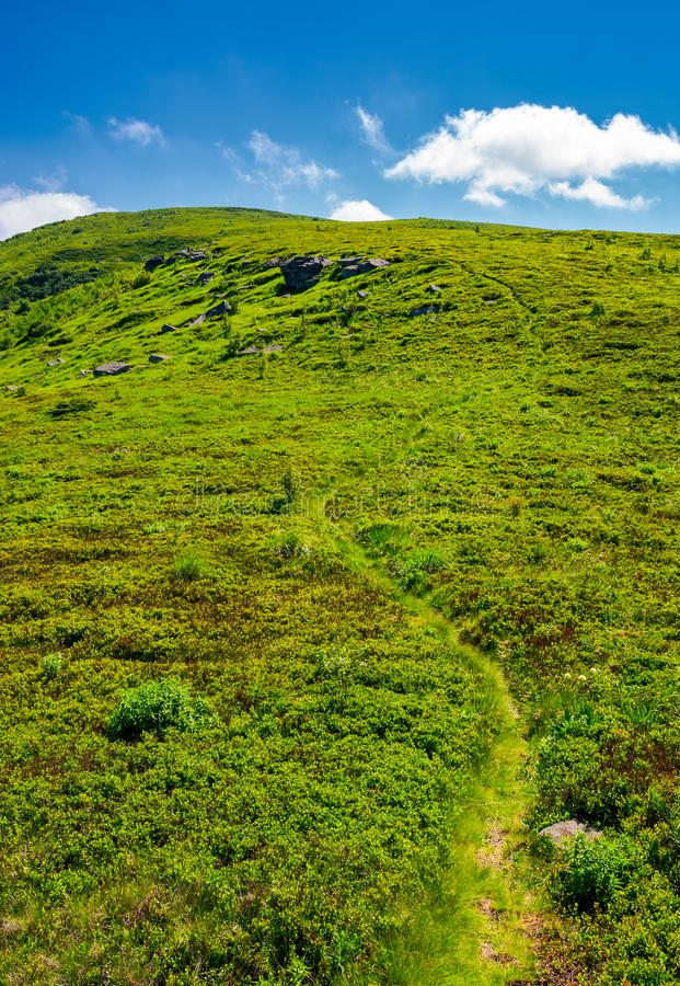 Footpath through the grassy hills of the mountain stock photos