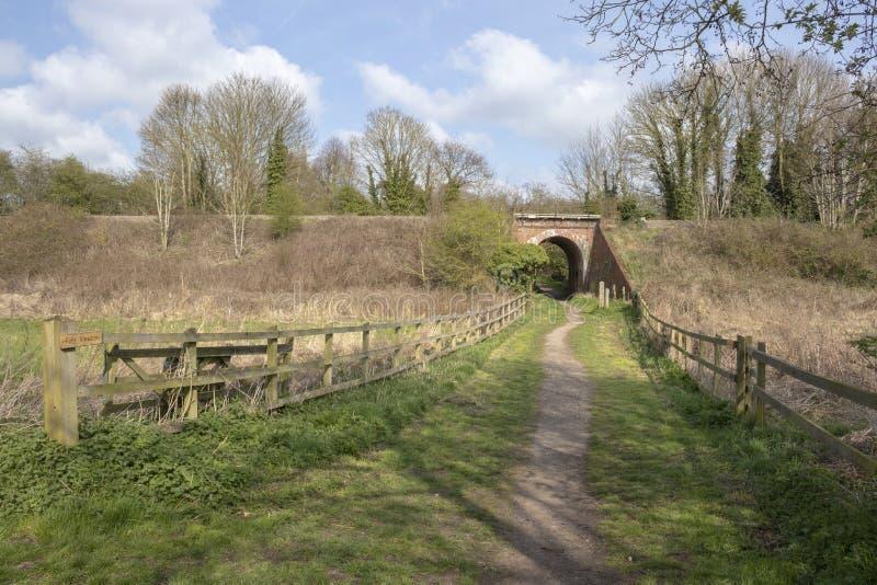 Footpath iść pod kolejowym mostem, Halesworth milenium zieleń, Suffolk, Anglia obraz royalty free
