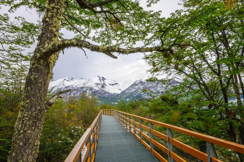 Footpath and landscape in the Los Glaciares National Park royalty free stock photography