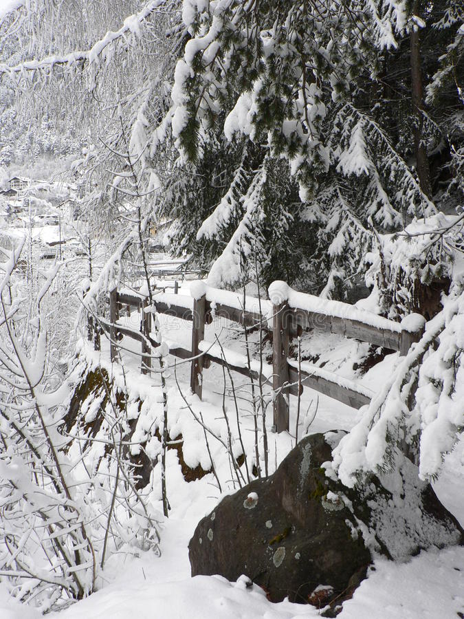 Footpath. In the picture is footpath with the handrail under the snow and trees, brush, forest royalty free stock photos