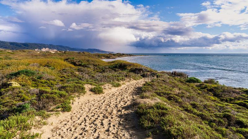 Footpath on the sand dunes of Ano Nuevo State Park; storm clouds visible in the background; Pacific Ocean Coastline, California royalty free stock images