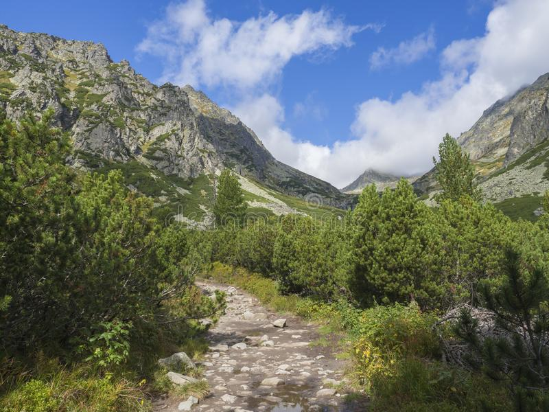 Footpath trail from Strbske Pleso, beautiful nature with pine trees and rocky montain peak, High Tatras mountain, Slovakia, late s stock image