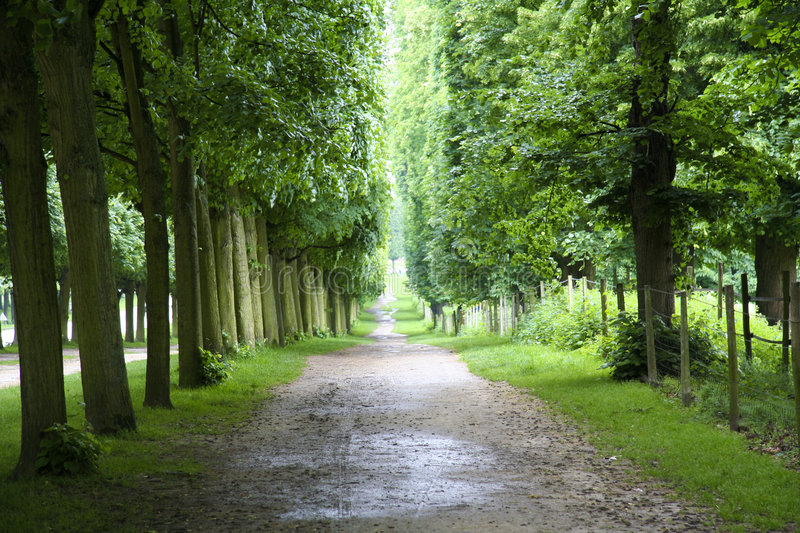 Footpath in versailles. A footpath in the garden of Versailles near Paris royalty free stock images