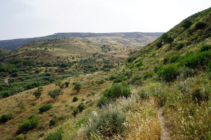 Footpath w Galilee zdjęcie stock