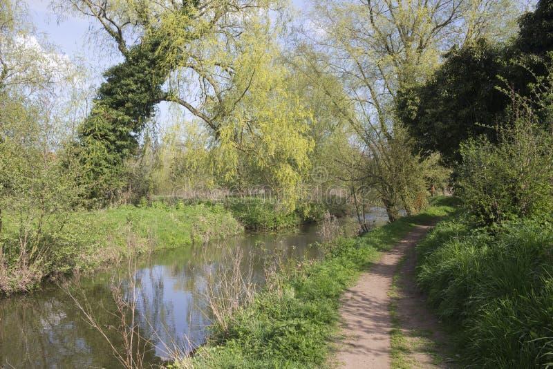 Footpath wzdłuż Nowego zasięg, Halesworth milenium zieleń, Suffo zdjęcia royalty free