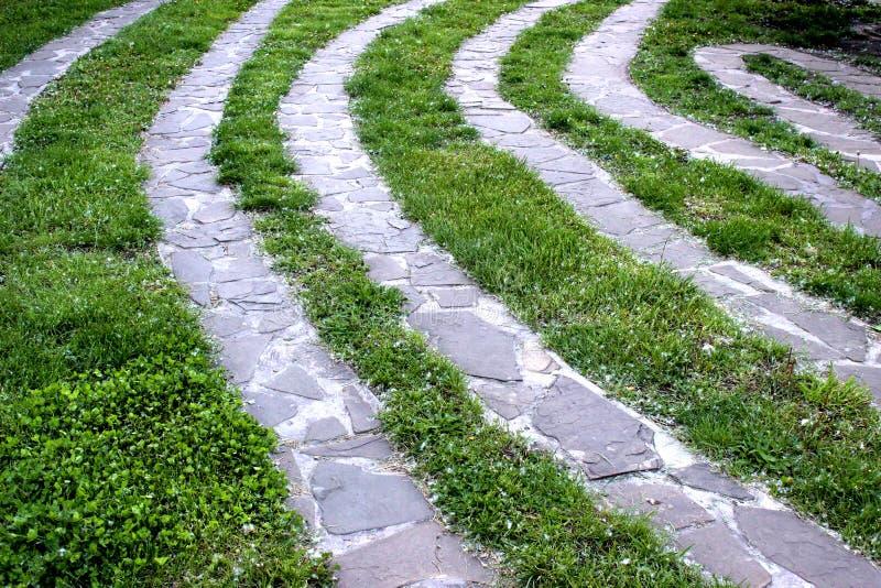 Footpath z zieloną trawą kształtuje teren projekt obraz royalty free