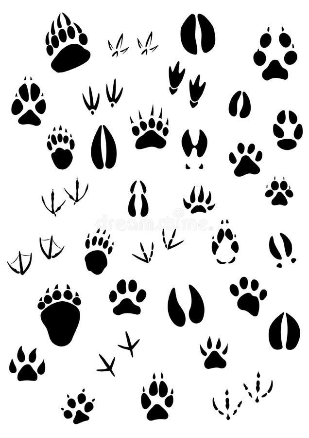 Footpints animais ajustados ilustração stock