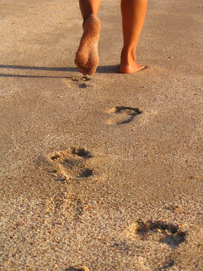 Download Footprint stock image. Image of foots, coast, walking, brazilian - 110917