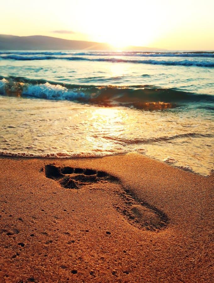 footprint fotografia stock