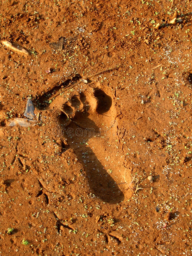 Footprint. A footprint in the dried mud on a riverbank in India royalty free stock image