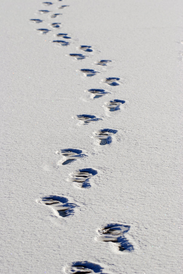 Free Footprint Stock Photography - 7534712
