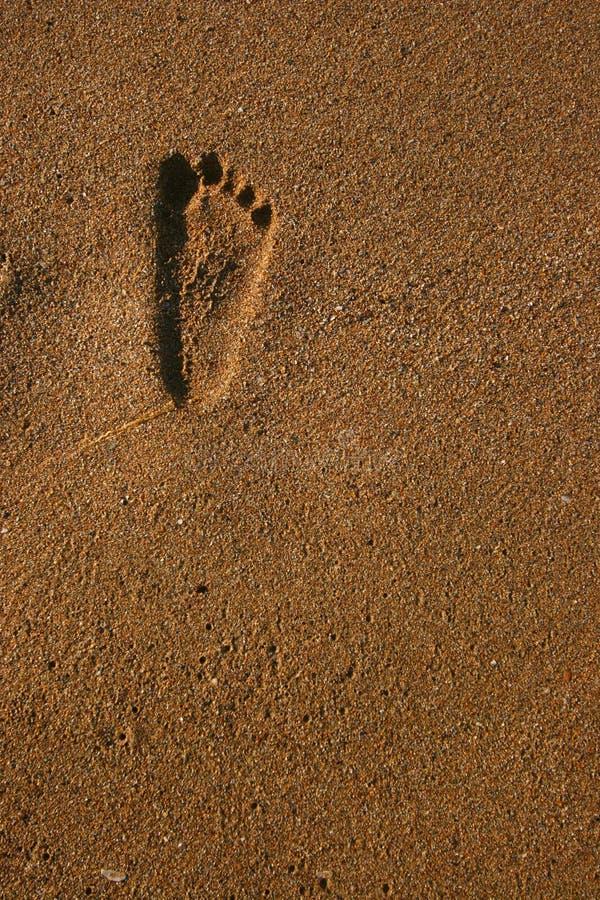 Footprint stock photography