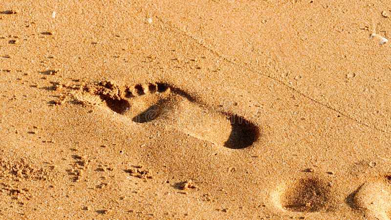Footprint background royalty free stock photography
