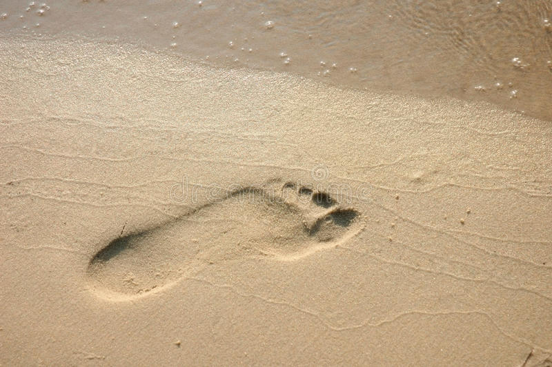 Download Footprint On The Beach Sand Stock Image - Image: 13517195
