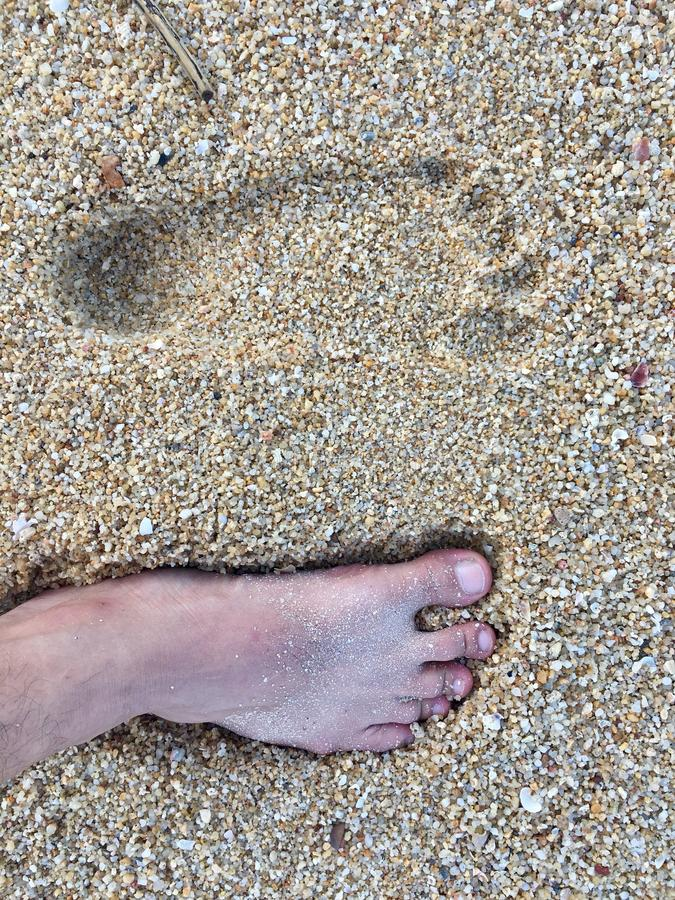 Footprint on the beach royalty free stock image