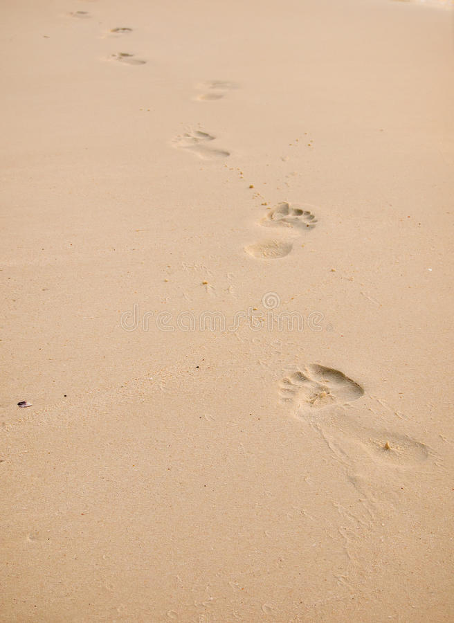 Footprint in golden sand royalty free stock photos