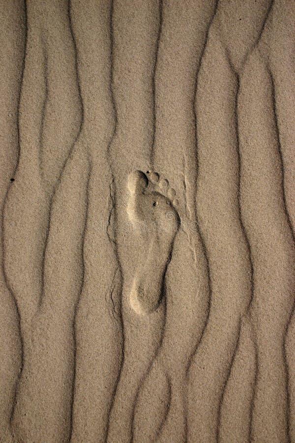 Footprint in sand stock photos