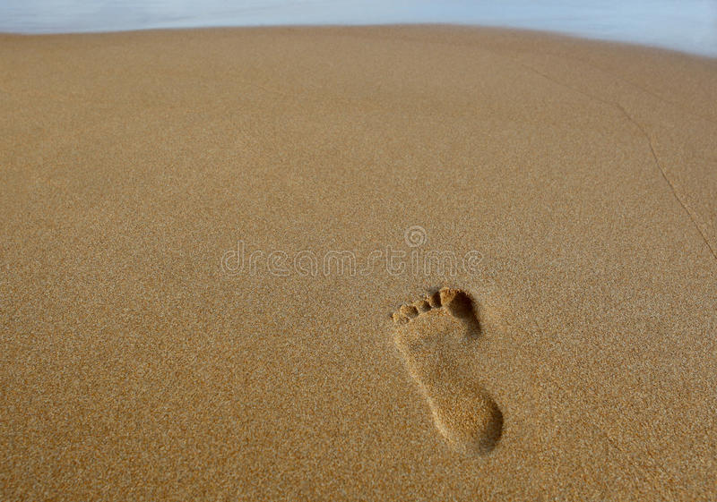 Download Footprint In The Sand stock illustration. Image of beach - 18716917