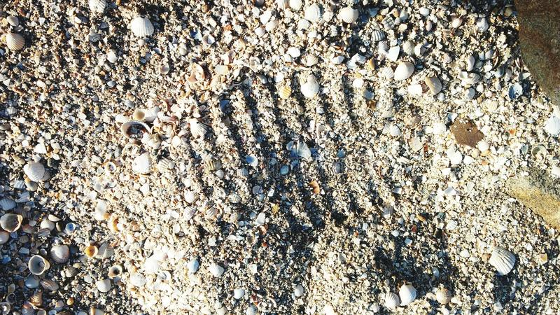 Footprint. In the sand stock photography