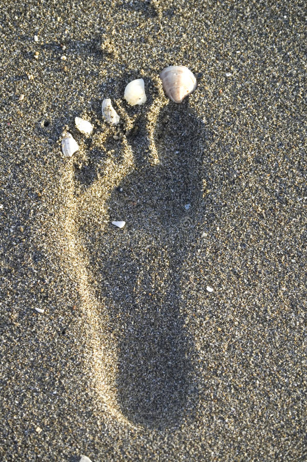 Footprint in the sand on the beach. With shells simulating nails stock photography