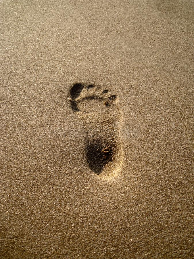 Footprint in the sand on the beach stock image