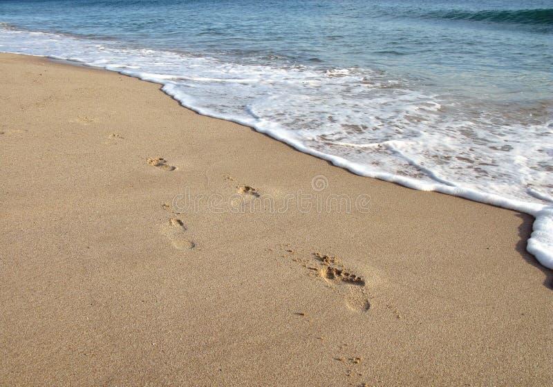 Footprint on sand in beach stock photos