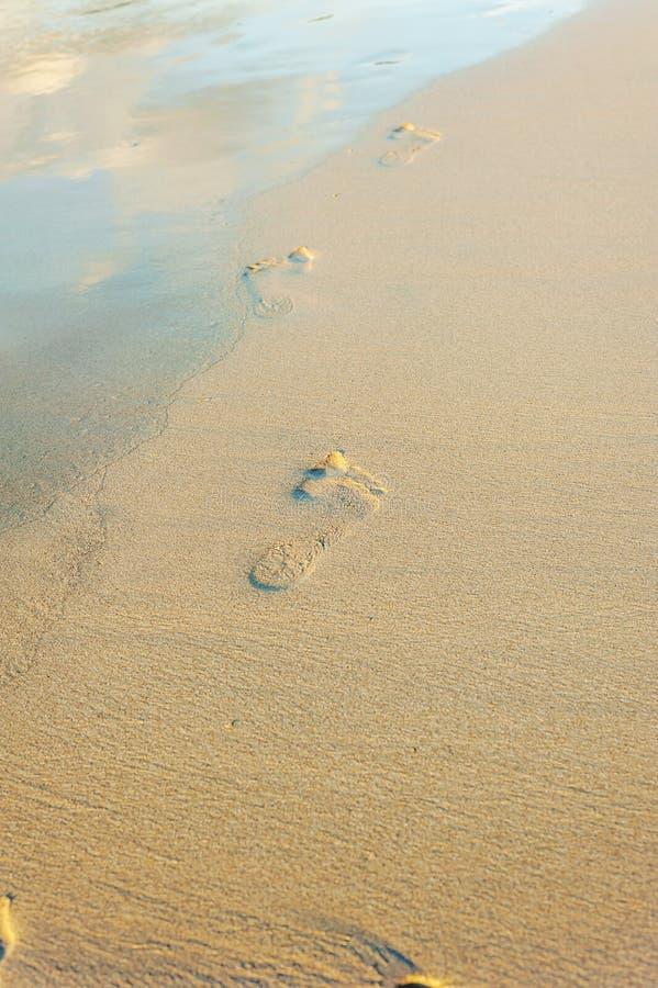 Footprint on sand beach with sunlight royalty free stock photos