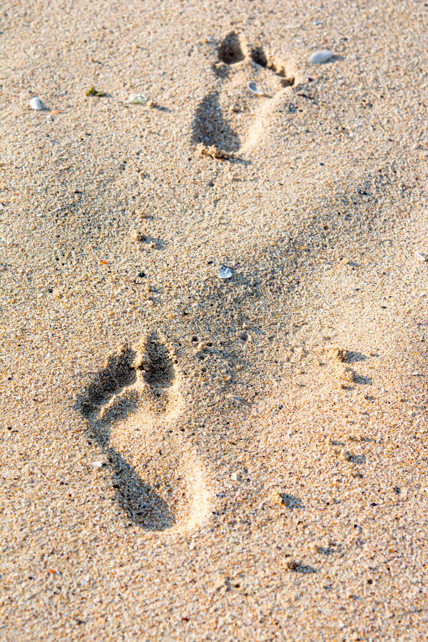 Footprint in the sand royalty free stock image