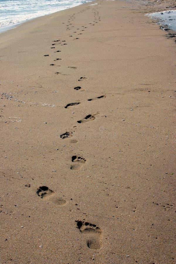 Download Footprint On Sands Stock Images - Image: 22254