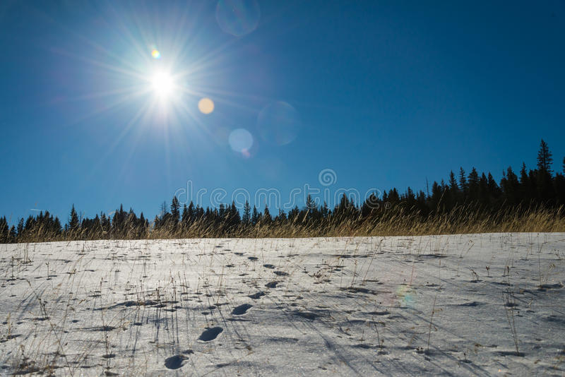 Footprint on snow and blue sky with Sun flare. 3 royalty free stock photography