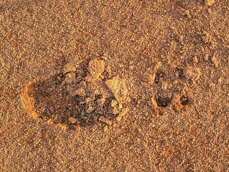 Footprint of soccer cleats shoe cleats in dry red clay of court. Footprint of traditional soccer cleats shoe cleats in dry red clay of court. Deep detail of royalty free stock images