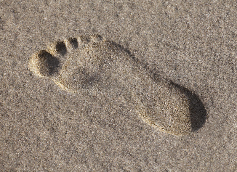 Footprint in the wet sand